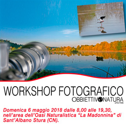 cuneo_workshop_1